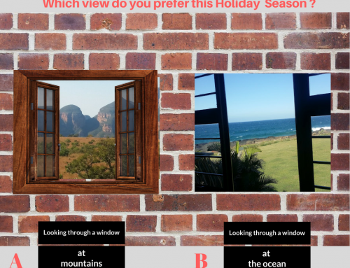 Looking through a Window – Which View do you Prefer ?
